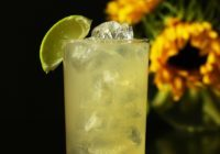 gin-and-ginger-ale-4478226_1280